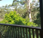 Deck Builder Brisbane North