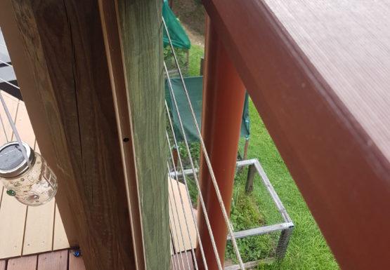 Deck Builder Bunya